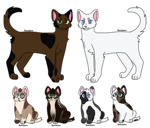 Brownstar and RabbitChaser   Kit adopts   [CLOSED] by emmbug124