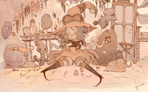 Witch - collector by Stetsubi-111