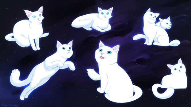 Kitten In The Stars (white) by MarikBentusi