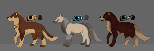 Wolf Adopts (CLOSED) by Dragongirl1993