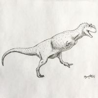 Majungasaurus Study by DinoHunter000