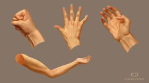 Hand Study by cdesign-art