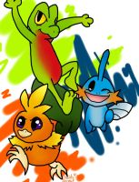 Hoenn Starters by SaintsSister47