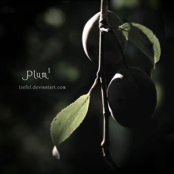 Plums Part 1 by tiefel