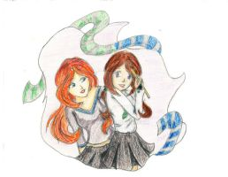 Ravenclaw and Slytherin by Chissy