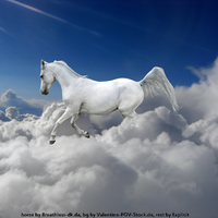 Horse through the clouds by Explicit18