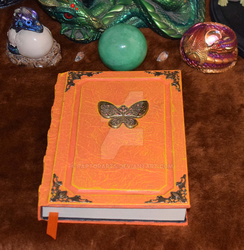Butterfly tome grimoire garden Entomology by RaptorArts