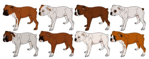 Tonka x Zella Litter HEALTH TESTED *OPEN* by angry-dog-for-life