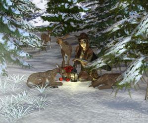 Christmas Contest 16 by Hexe2008