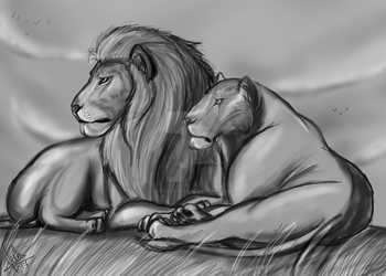 King and Queen by Julis-Rocks