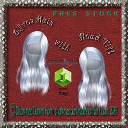 Silver Hair with Head Tilt PNGs--FREE STOCK by ShawneeDawn