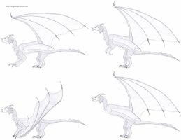 Dragon and Wyvern - quadruped and biped concepts by Guy-Inkognito