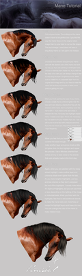 Mane Tutorial Step by Step by alcinda