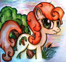 Carrot Top by Tomek2289