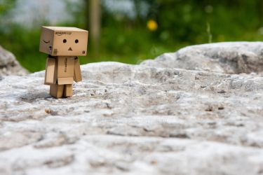 Danbo the Explorer II by PeteOB