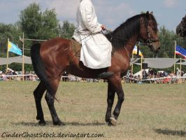 Hungarian Festival Stock 124 by CinderGhostStock