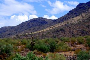 South Mountain by SuicideBySafetyPin