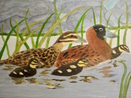 AHH!  Finished -- my duck stamp entry by RaptorWings