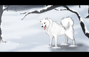Snow by Frodse