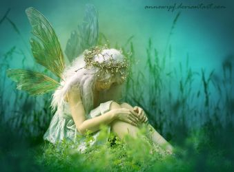 Fairy in the Grass by annewipf