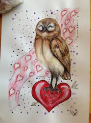 Owl Ways in My Heart (The Owls for All Occasions!) by DreamingofDarkhorses
