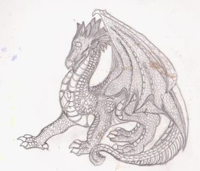 Dragon sketch by rocklovingwolf100
