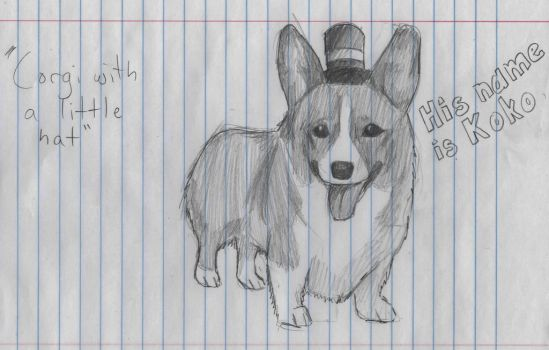 Corgi with a Little Hat by Facepalmmaster