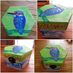 Kingfisher on a box by HumanHunter