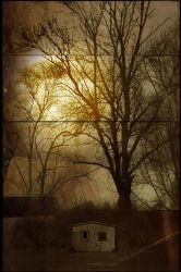 Dream Photography 9 by stitchpuller