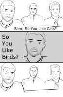 So You Like Cats? by Storming777