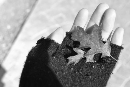 Hand and leaf by RipperBlack666