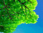 Sky Through Leaves by SynCallio