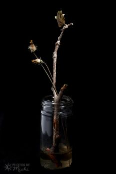 Still Life with Weeds and Twig by Kyndelfire