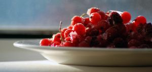 Red currant_3 by MariStel