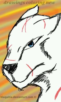 wolf drawing colorong new by hlaquitia17