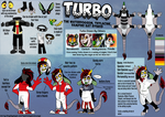 Turbo Boosteric Ref by KingGigabyte