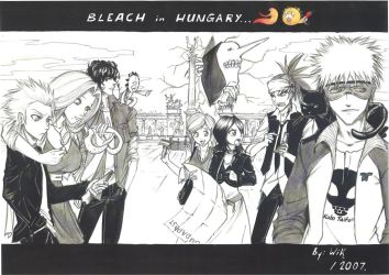 Bleach in Hungary... by Wik86
