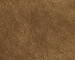 Texture Leather by Gala3d