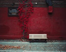 Red. by LaurentGiguere
