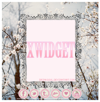 XWidget - Redes Sociales. by drinks0ul