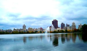Central Park by thale04
