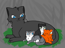 Firestar and Cinderpelt Kits Version 1 by NnyFluff