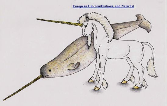European Unicorn and Narwhal by Shara-Moonglow