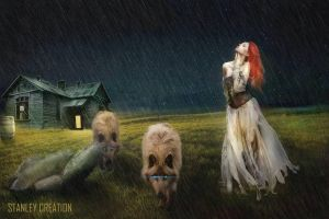 rainy night - leader of the pack by Stanley-ontheroad