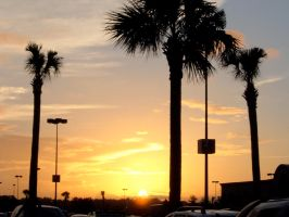 sunset at myrtle beach by shane613