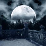 Premade Background  1162 by AshenSorrow