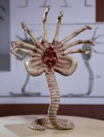 Alien Facehugger Front View by FUVL