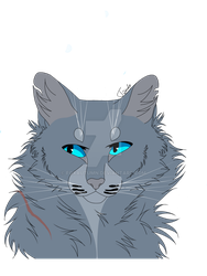 Bluestar Reupload  by FoxAutumn