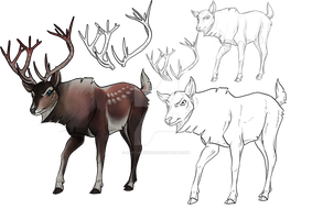 DEER adoption closed by NorthernRed