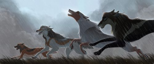 Our Path by Tazihound